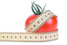 Free Tomato Stock Photos - 7922013