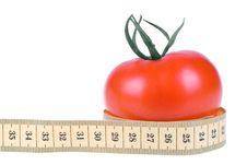 Free Tomato Stock Image - 7922031