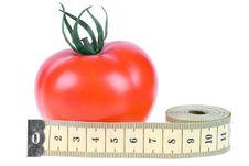 Free Tomato Stock Photos - 7922043