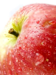 Free Red Apple Royalty Free Stock Photography - 7922327