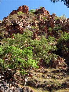 Free Kimberley Countryside Royalty Free Stock Photos - 7922598
