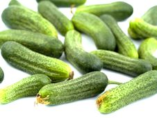 Free Green Cucumber Stock Photography - 7922602