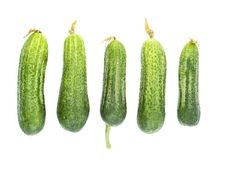 Free Green Cucumber Royalty Free Stock Images - 7922609