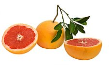 Free Close Up Of Grapefruit And Its Sections Royalty Free Stock Images - 7922669