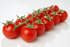 Free Red Tomato Stock Images - 7923274