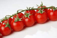 Free Red Tomato Royalty Free Stock Photography - 7923277