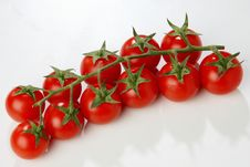 Free Red Tomato Stock Photography - 7923282