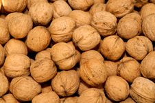 Free Lots Of Walnuts Stock Image - 7923721