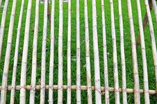 Dried Bamboo Stick In The Garden Royalty Free Stock Image