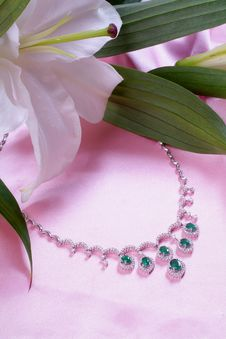 Free Necklace And Flower Stock Photo - 7925670