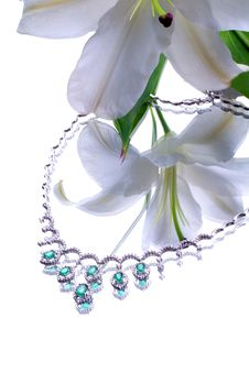 Free Necklace And Flower Royalty Free Stock Photography - 7925827