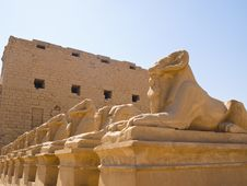 Free Ram-headed Sphinxes At The Gates Of Karnak Royalty Free Stock Photography - 7927787