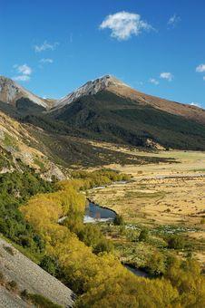 Free Scenery Of New Zealand Royalty Free Stock Image - 7929836