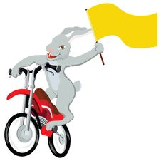 Free Bunny Biker Royalty Free Stock Photos - 7929978