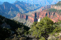 Free Grand Canyon National Park, USA Royalty Free Stock Images - 7937249