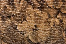 Free Leather Background Royalty Free Stock Image - 7930116