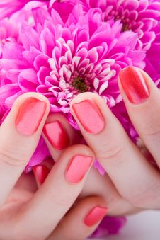 Free Care For Woman Hands Stock Photo - 7930560