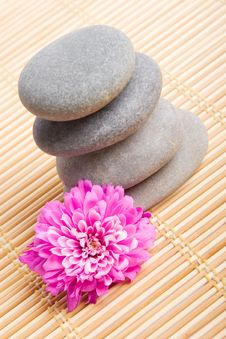 Free Stones For Spa Therapy Royalty Free Stock Photos - 7930758