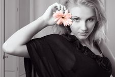 Free Attractive Young Woman Holding Gerbera Stock Photography - 7931612