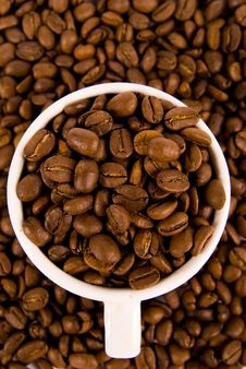 Free Coffee Beans In A Cup Royalty Free Stock Photo - 7932095