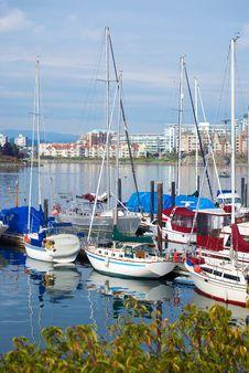 Yachts Bay. Royalty Free Stock Photography