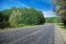 Free Road Between Trees Stock Photo - 7936200