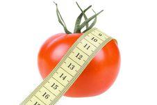 Free Tomato Stock Images - 7936344