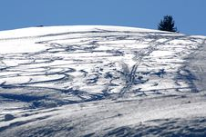Free Skis Tracks On The Snow Royalty Free Stock Photography - 7936587