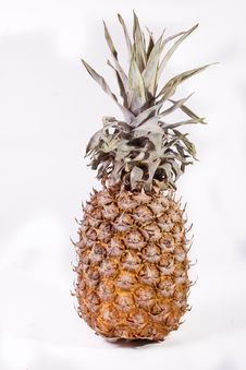Free Pineapple Royalty Free Stock Images - 7938459