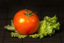 Free Tomato With Salad Stock Photo - 7939390