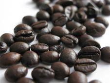 Free Coffee Beans Stock Photo - 7939930