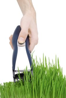 Free Cut Grass Royalty Free Stock Photos - 7946078
