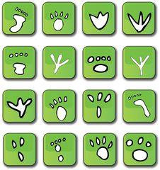 Green Glossy Footprint Icons Royalty Free Stock Photos