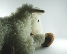 White Toy Lamb Stock Images
