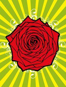 Free Rose Flower Stock Image - 7949911