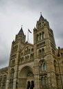 Free Natural History Museum In London Kensington Stock Images - 7954224