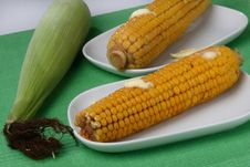 Free Boiled Corn Cob With Butter Stock Images - 7950324