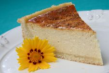 Piece Of Quark Pie Dessert Royalty Free Stock Photography
