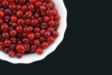 Free Fresh Cranberry On A Plate. Royalty Free Stock Image - 7950526