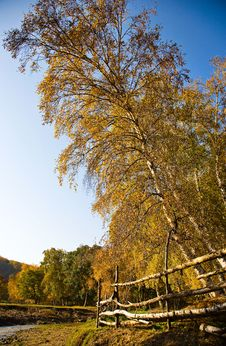 Free Antumn Landscape Stock Images - 7952564