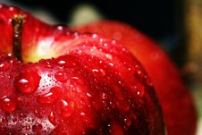 Free Water Drops On A Red Apple Stock Images - 7957114