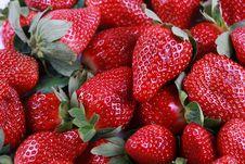 Fresh Delicious Strawberries Stock Image