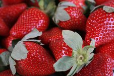 Fresh Delicious Strawberries Royalty Free Stock Photo