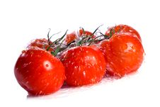 Free Tomatoes Under Pouring Water Royalty Free Stock Photo - 7957545