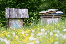Free Apiary Stock Photos - 7958553