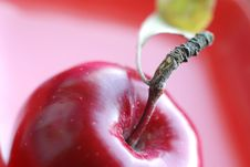 Free Red Apple Royalty Free Stock Photos - 7958938