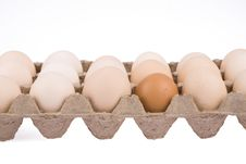 Free Carton Of Eggs Stock Photos - 7959013