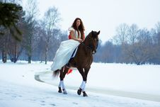 Free Woman On A Horse Stock Photos - 7959213