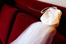 Free Purse And Veil Royalty Free Stock Photo - 7961065