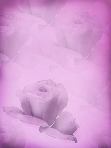 Free A Card With The Stylised Rose. Stock Image - 7961421